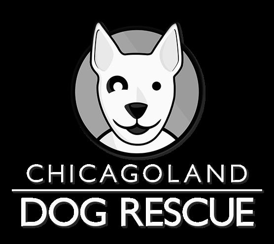 Dog Rescue Logo